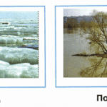 Как нарисовать живую и неживую природу поэтапно, где срисовать, образец?