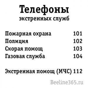Как вызвать полицию с мобильного телефона в москве