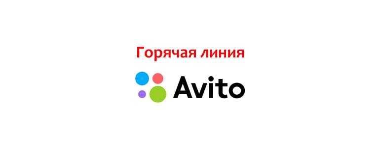 Телефон горячей линии Авито, как написать в службу поддержки