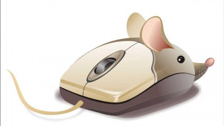 Не работает колесико на мышке и не прокручивает страницы: что делать?